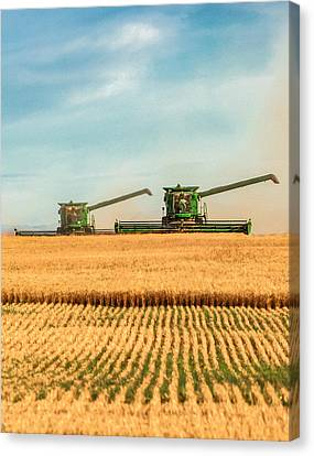 Augers Out Canvas Print by Todd Klassy
