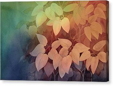 August II Canvas Print by Johanna Axelrod