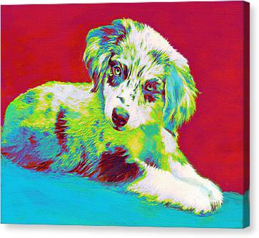 Aussie Puppy Canvas Print by Jane Schnetlage