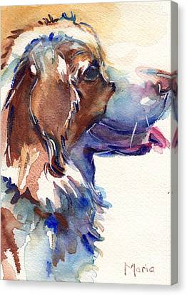 Australian Shepherd Puppy Canvas Print by Maria's Watercolor