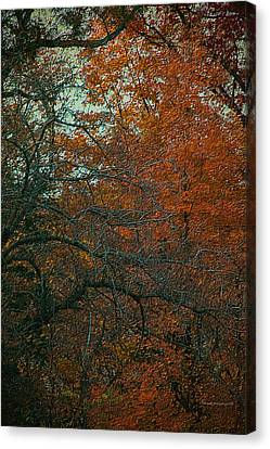 Autumn 2015 Orange Trees Pa 01 Vertical Canvas Print by Thomas Woolworth