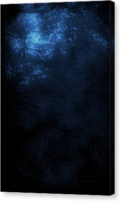 Autumn 2015 Trees By Moonlight Pa 03 Vertical Canvas Print by Thomas Woolworth