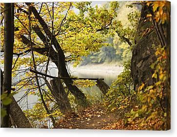 Autumn 9 Canvas Print by Dominika Aniola