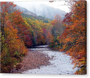 Autumn Along Williams River Canvas Print by Thomas R Fletcher