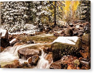 Autumn At Gore Creek 3 - Vail Colorado Canvas Print by Brian Harig