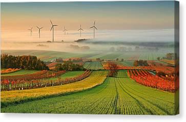 Autumn Atmosphere In Vineyards Canvas Print by Matej Kovac