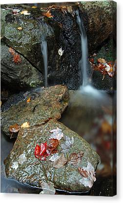 Down East Canvas Print featuring the photograph Autumn Cascades by Juergen Roth