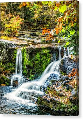 Autumn Color At Factory Falls Canvas Print by Nick Zelinsky