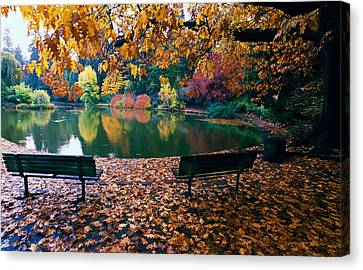 Autumn Color Trees And Fallen Leaves Canvas Print by Panoramic Images