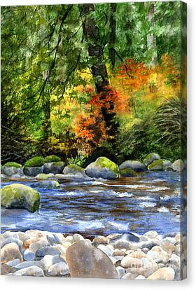 Autumn Colors In A Forest Canvas Print by Sharon Freeman