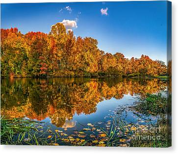 Autumn Colors On The Woodbury Lake Canvas Print by Nick Zelinsky