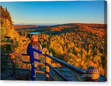 Autumn Colors Orberg Mountain North Shore Minnesota  Canvas Print by Wayne Moran