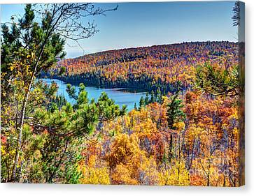 Autumn Colors Overlooking Lax Lake Tettegouche State Park II Canvas Print by Wayne Moran