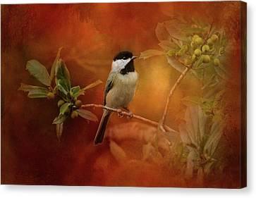 Autumn Day Chickadee Bird Art Canvas Print by Jai Johnson