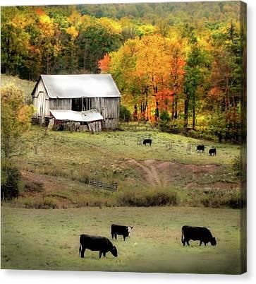 Autumn Farmhouse Canvas Print by Michael Forte