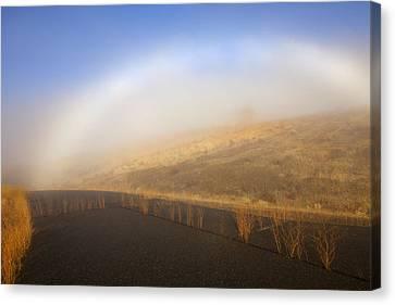 Autumn Fog Bow Canvas Print by Mike  Dawson
