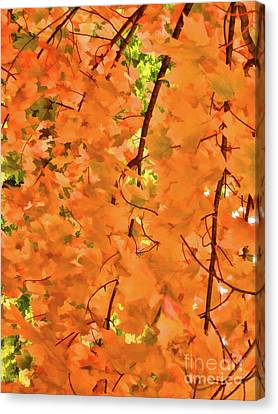 Autumn Foliage 3 Canvas Print by Lanjee Chee