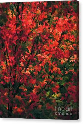 Autumn Foliage 6 Canvas Print by Lanjee Chee