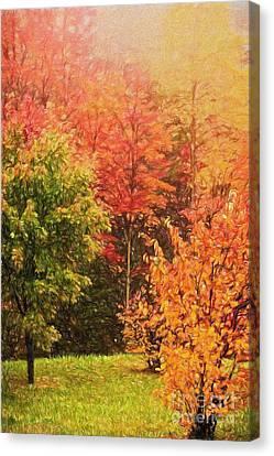 Autumn Gathering Ap Canvas Print by Dan Carmichael
