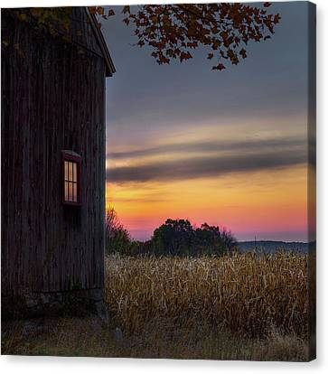 Autumn Glow Square Canvas Print by Bill Wakeley