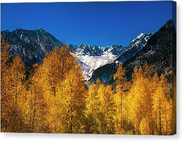 Autumn In Colorado Canvas Print by Andrew Soundarajan