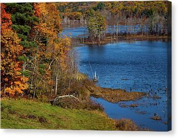 Autumn In Litchfield County Canvas Print by Karol Livote