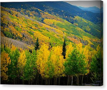 Autumn In The Rockies Canvas Print by Aaron Burrows