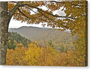 Autumn In The Smokies Canvas Print by Michael Peychich