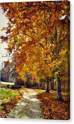 Autumn Lane Canvas Print by Jan Amiss Photography