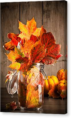 Autumn Leaves Still Life Canvas Print by Amanda Elwell