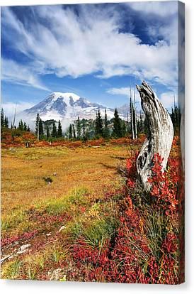 Autumn Majesty Canvas Print by Mike  Dawson