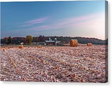 Autumn Memories Canvas Print by Todd Klassy