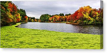 Autumn On Grist Mill Pond In Sudbury Canvas Print by Luke Moore