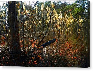 Autumn On The Sough Canvas Print by Julie Dant