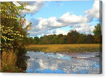 Autumn Reflections Meditation Art Canvas Print by Robyn King