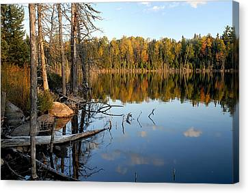 Autumn Reflections On Little Bass Lake Canvas Print by Larry Ricker