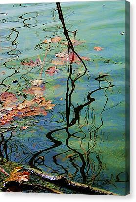 Autumn Ripples 9 Canvas Print by Todd Sherlock
