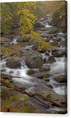 Autumn Smokeys Canvas Print by Jon Glaser