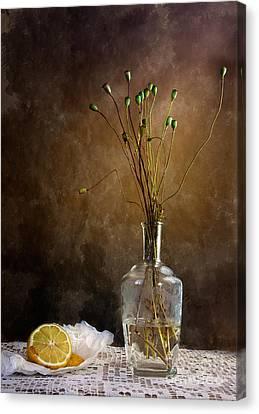 Autumn Still Life Canvas Print by Nailia Schwarz
