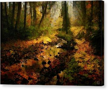 Autumn Sunrays Canvas Print by Gun Legler