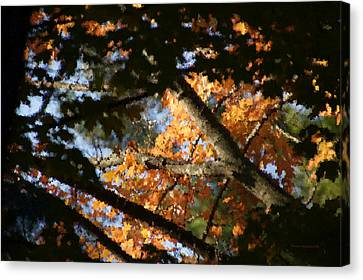Autumn Trees 2015 Pa 01 Canvas Print by Thomas Woolworth