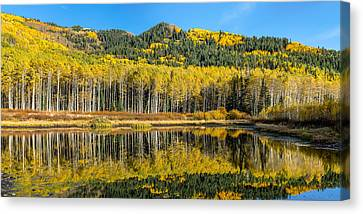 Autumn Trees Reflecting On Willow Lake In Utah Canvas Print by James Udall