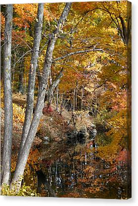 Autumn Vintage Landscape 4 Canvas Print by Lanjee Chee