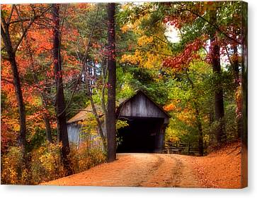 Autumn Wonder Canvas Print by Joann Vitali