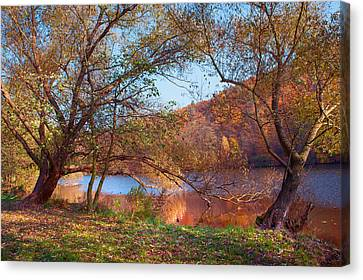 Autumnal Trees By The Lake Canvas Print by Jenny Rainbow