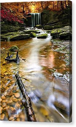 Autumnal Waterfall Canvas Print by Meirion Matthias