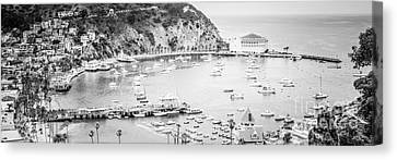Avalon California Panoramic Picture Of Catalina Island Canvas Print by Paul Velgos