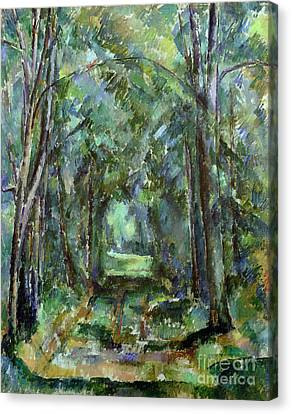 Avenue At Chantilly Canvas Print by Paul Cezanne