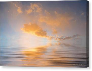 Awakening Canvas Print by Jerry McElroy