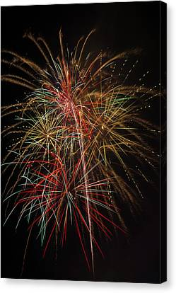 Awesome Amazing Fireworks Canvas Print by Garry Gay